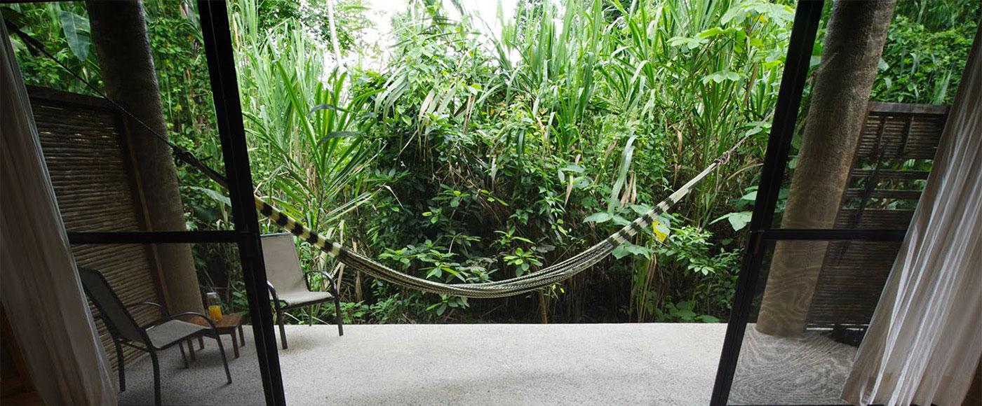 canto-selva-ecoturismo-chaiapas